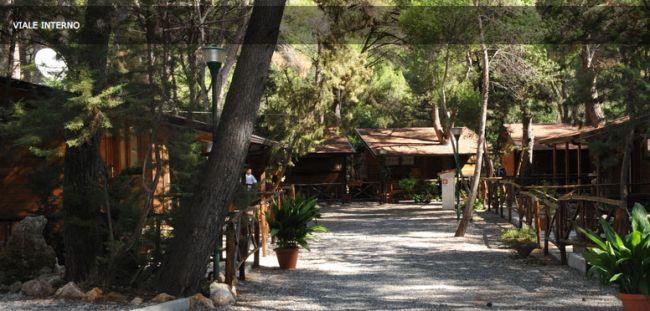 pineta villaggio camping club marina di camerota campania